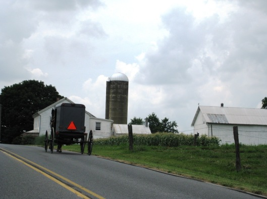 Amish Buggy and Farmstead