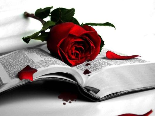 book-rose-red-fall