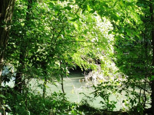 Babbling Brook2