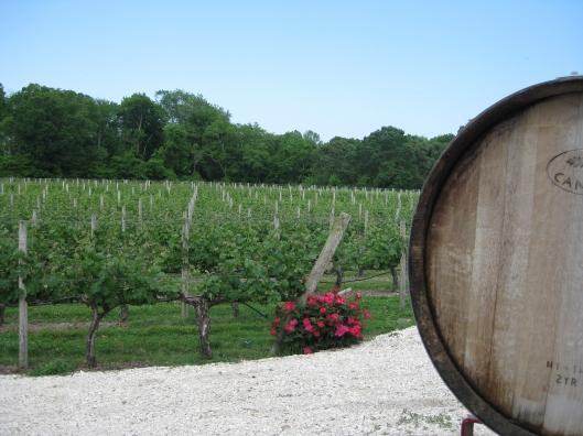 Winery 5