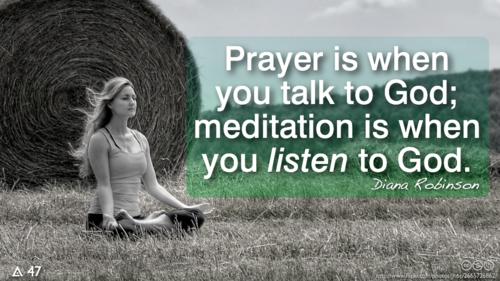 Wisdoms Voice