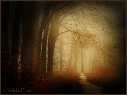 enter_autumn_by_nelleke-d2xs68g