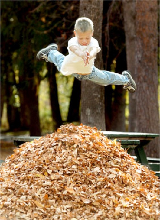 Kid-jumping-into-pile-of-leaves