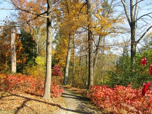 Longwood Gardens 006