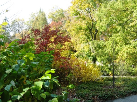 Longwood Gardens 015