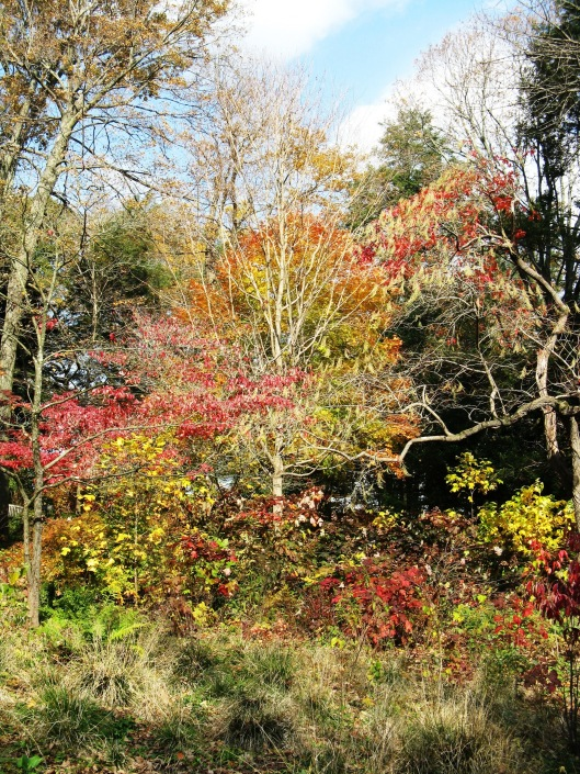 Longwood Gardens 023
