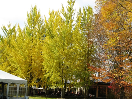 Longwood Gardens 027
