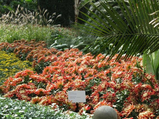 Longwood Gardens 036