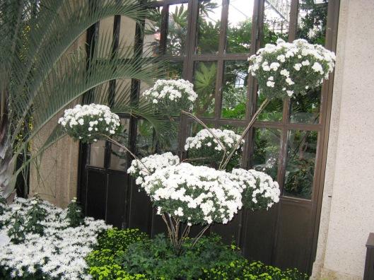 Longwood Gardens 040