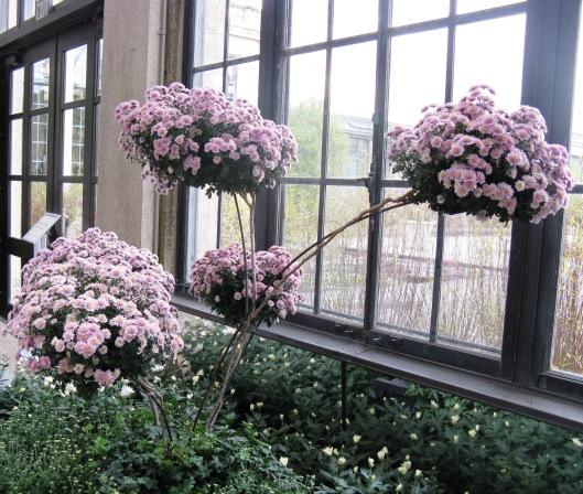 Longwood Gardens 047