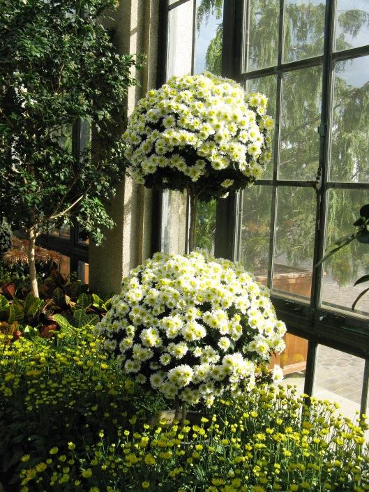 Longwood Gardens 060