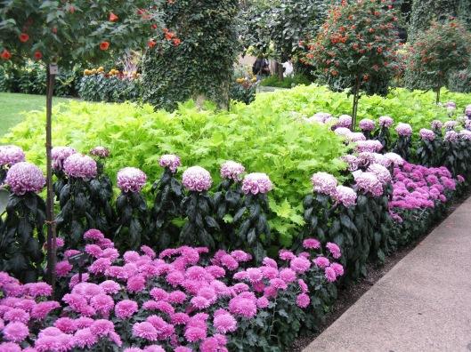 Longwood Gardens 062