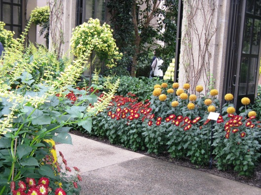 Longwood Gardens 063