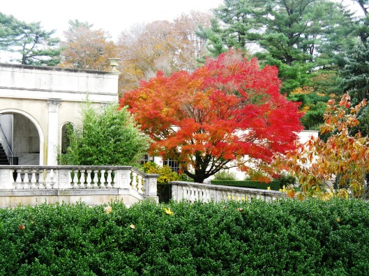 Longwood Gardens 086