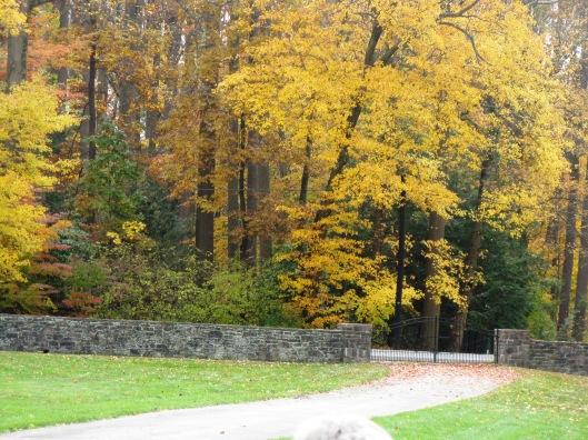Longwood Gardens 094