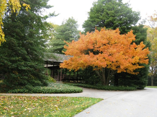 Longwood Gardens 095