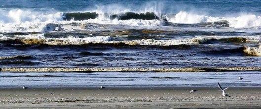 Ocean's Shore