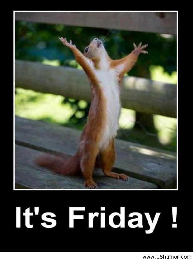 Friday Fun- TGIF! | Booknvolume