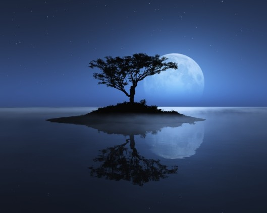 The Serenity of Night
