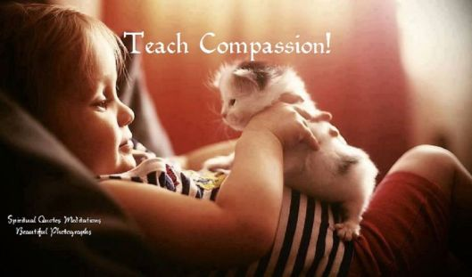 Teach compassion...