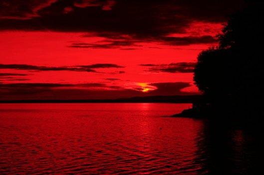 Crimson5