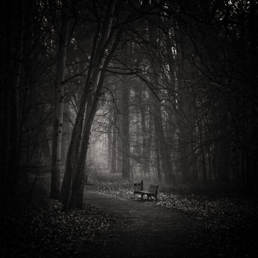 Silence____by_WiciaQ
