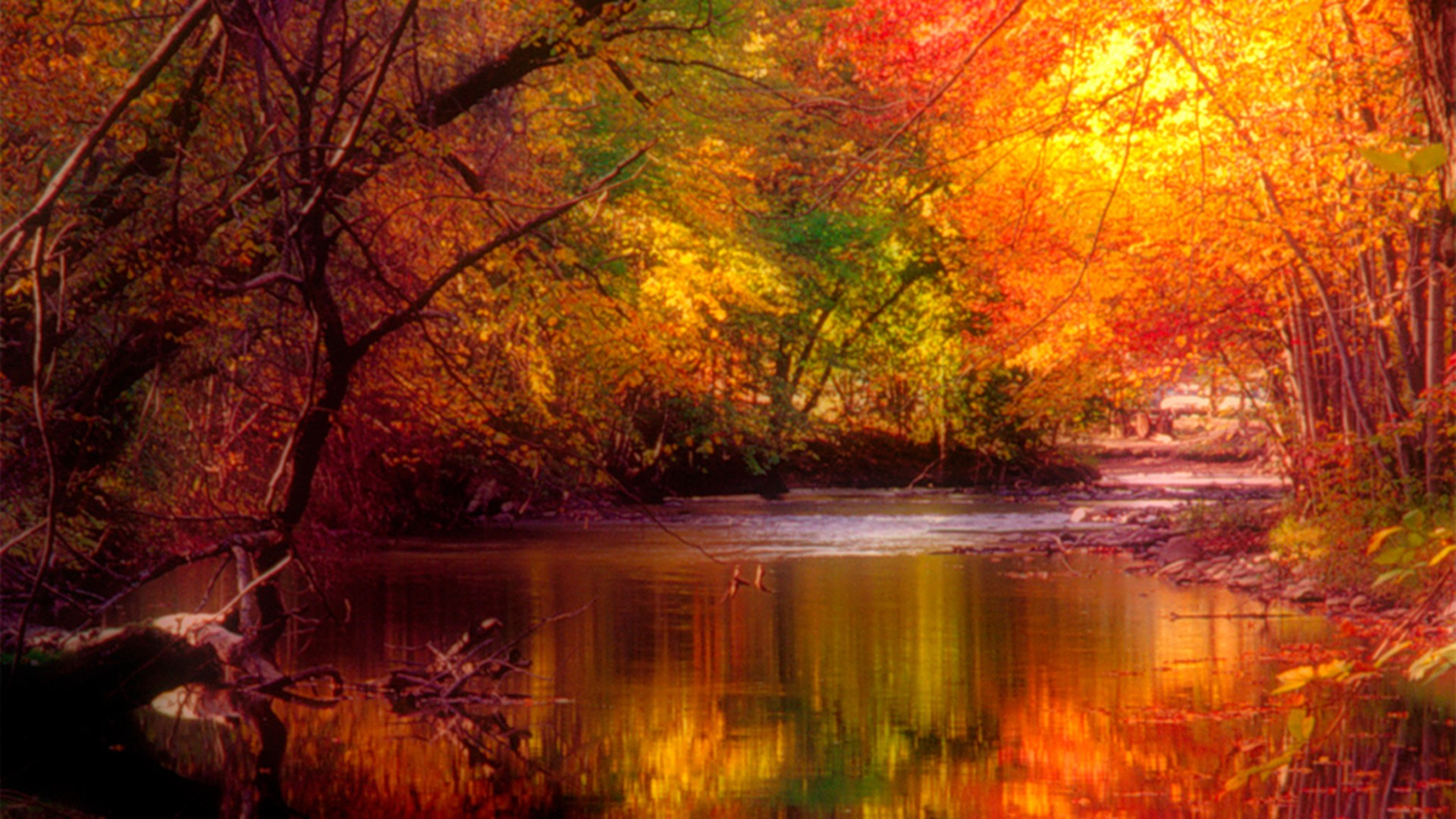 Wordless Wednesday Autumn Reflections Booknvolume