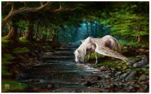 The Stream -  aaron pocock