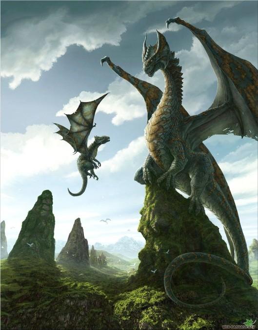 DragonBaby7