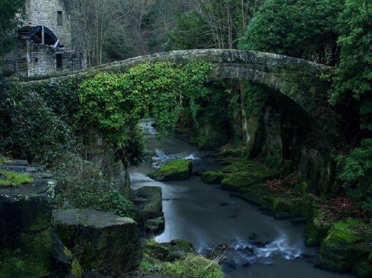 Bridges6