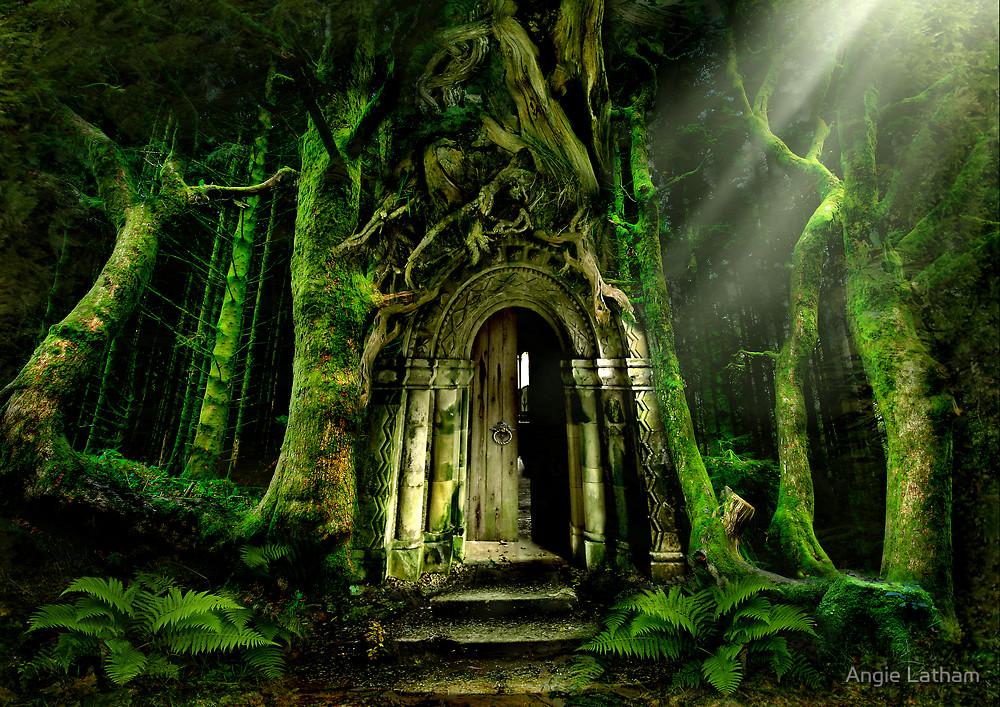 Portal Booknvolume