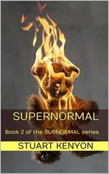 supernormal-cover