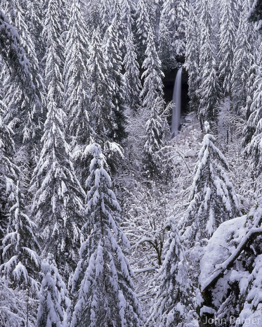 67 ORSF 006 - North Falls in winter with heavy snow clinging to surrounding conifers, Silver Falls State Park, northern Oregon, USA --- (6x7 cm original, File size: 6000x4800, 82.4mb uncompressed)