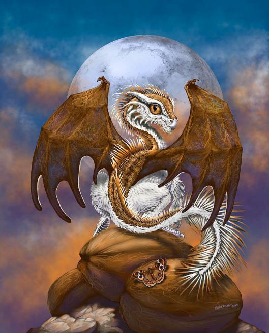 coconut-dragon-stanley-morrison