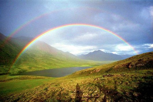 Rainbow6
