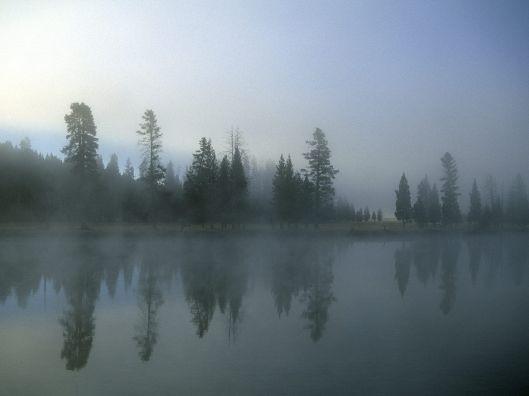 mists5
