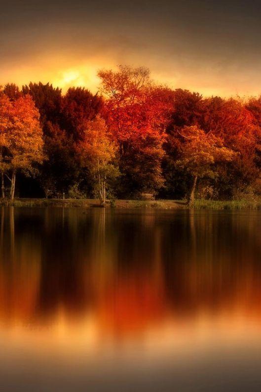 autumnal1