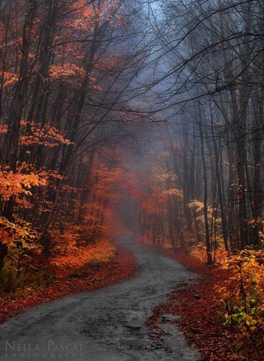 autumnal3