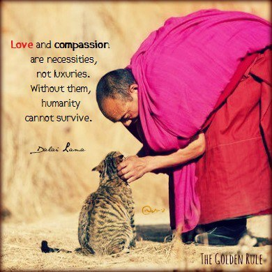 love-and-compassion