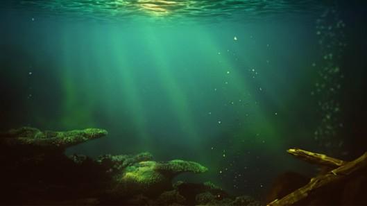 submerged1