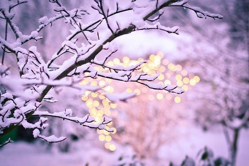 winter-light