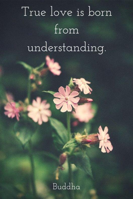 understanding1